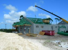 Mold inhibitor pretreated trusses